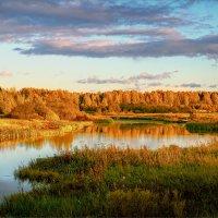 Вечерние краски осени... :: Александр Никитинский