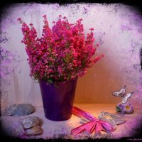 Когда цветёт Эрика :: Nina Yudicheva