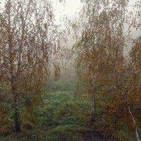 Осеннее утро :: Надежда Бахолдина
