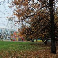 Колесо и осень. :: bemam *