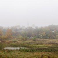 Туман :: Андрей Зайцев