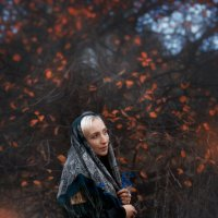 В осеннем лесу :: Евгений Мельников