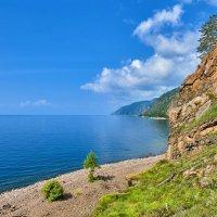 Маленькая лиственница на берегу Байкала :: Виктор Никитин