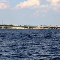 Троицкий мост. Питер :: Наталья