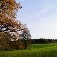 Осень на пригорке :: Валерий Розенталь