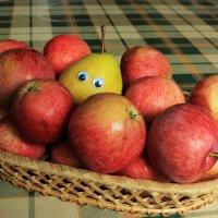 Из жизни фруктов: свой среди чужих 2 :: Галина Galina