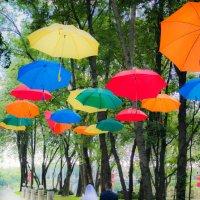 Разноцветная дорога в будущее :: Наталья Трифонова