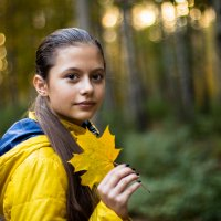 Осень :: Михаил Аленин