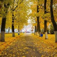 Как же красиво в Вышнем Волочке осенью (местами) :: Дмитрий Колесников