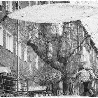 """""""Когда деревья были большими... """" :: Светлана Лиханова"""