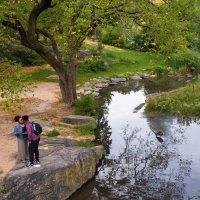 New York,Central Park :: Valera Kozlov