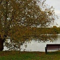 Московская осень. :: vkosin2012 Косинова Валентина