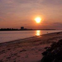 Очарование ночного Гамбурга (серия) Закат на реке. Собака на берегу :: Nina Yudicheva