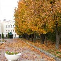 осень в городе :: Инга Егорцева