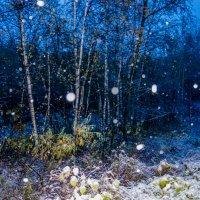 Первый октябрьский снег! :: Ирина Антоновна