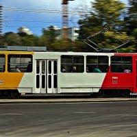 Езжайте в Аркадию стареньким пятеньким трамваем, садитесь на скамейку, закройте глаза... :: Александр Корчемный
