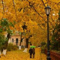 Золотая осень :: Владислав Лопатов