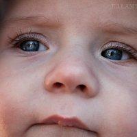 Младенец :: Евгения Ламтюгова