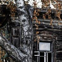 Осень жизни :: Сергей Елесин