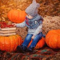 Осень :: Светлана Светленькая