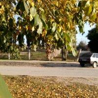 Осень :: Татьяна Королева