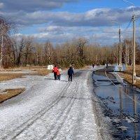 Рыхлый мартовский снег и синь небес :: Екатерина Торганская