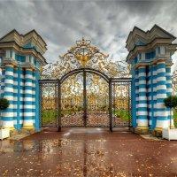 ворота Екатерининского дворца :: Алексей Говорушкин