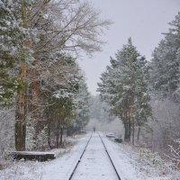 Вот и первый снег :: Алексей http://fotokto.ru/id148151Морозов