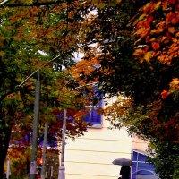 Ходит по городу девушка Осень... :: Milocs Морозова Людмила