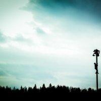 Сергей Голубков - Бакшевская Масляница_1 :: Фотоконкурс Epson