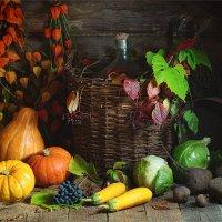 Осенние дары природы :: Ирина Лепнёва