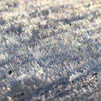 Первый заморозок :: Андрей Скорняков