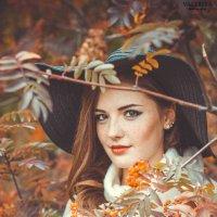Осенние краски :: Валерия Photo