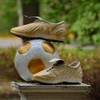 Золотой мяч :: Татьяна Евдокимова