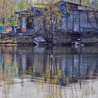Там, где живет речной дух... :: Екатерина Торганская