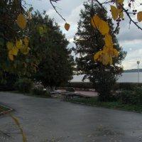 На набережной Волги :: марина ковшова