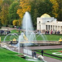 Вид на большой фонтан с Самсоном и его помощником львом. :: Владимир Гилясев