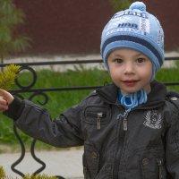Портрет с веточкой :: Дмитрий Сиялов