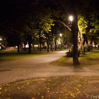Уличный фонарь :: Emil Buturlin