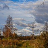 Осень в деревне :: Анатолий
