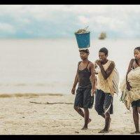 Будни Мадагаскара...После вечернего лова. :: Александр Вивчарик