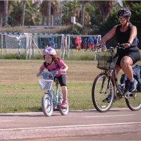 Мир велосипеда-3 :: Lmark