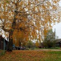 Ушли в осень :: Катя Бокова