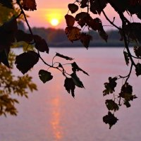 Осенний рассвет. :: владимир