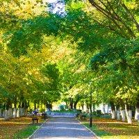 осень в парке :: Oksana Verkhoglyad