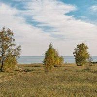 Дорога к морю :: Дмитрий Конев