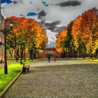 Оранжевая осень :: Павел