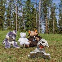 История игрушек... :: Дмитрий Сиялов