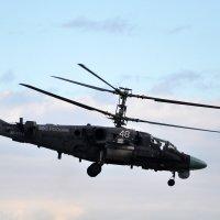 """КА-52 """"Аллигатор"""" :: Илья Кочанов"""