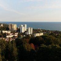 Сочи :: ovatsya /Ирина/ Никешина
